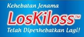 logo loskiloss