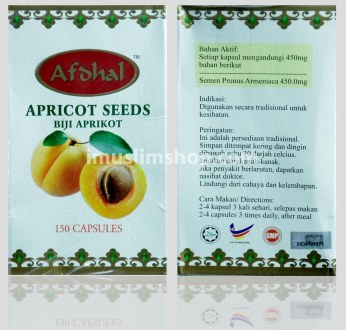 Copy of apricot seed