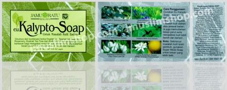 kalypto soap
