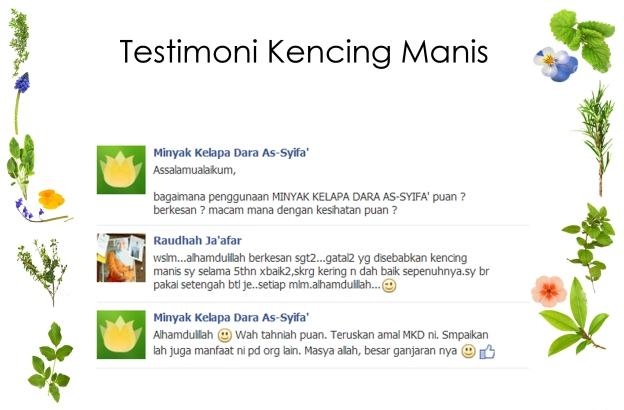 kencing-manis